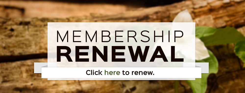 Renew OTLA membership