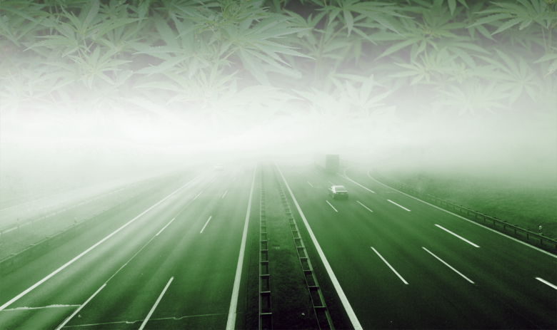 Driving into the THC Fog